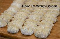 How To Wrap Gyoza