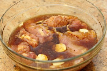 Chicken-with-Garlic-Onion-Sauce-3