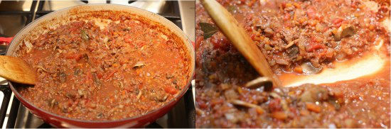 Spaghetti Meat Sauce 9