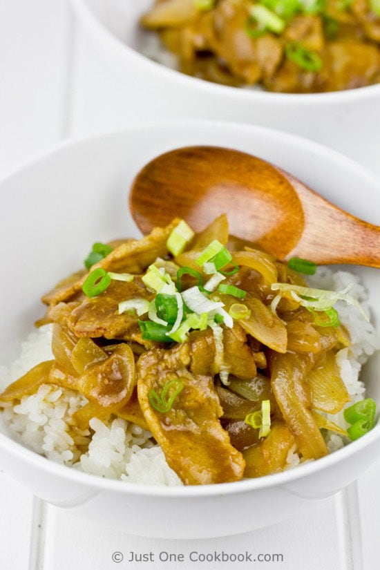 Pork Curry Donburi | JustOneCookbook.com