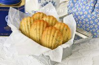 Lavender Madeleines – Guest Post by Roti n Rice