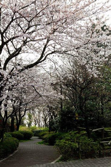 Japan Trip 2012 Vol 1 9