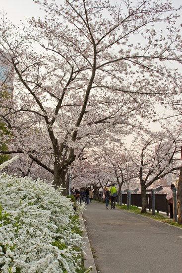 Japan Trip 2012 Vol 2 13