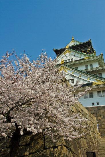 Japan Trip 2012 Vol 2 19