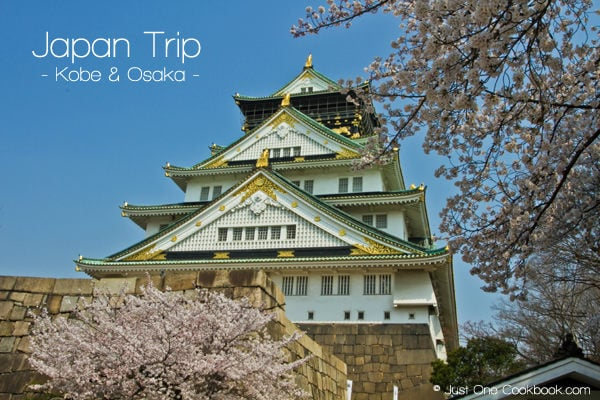 Japan Trip 2012 vol. 2 | JustOneCookbook.com