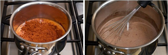 Chocolate Ice Cream 3
