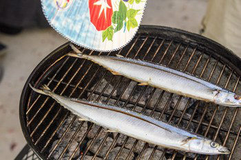 Grilled Sanma 7