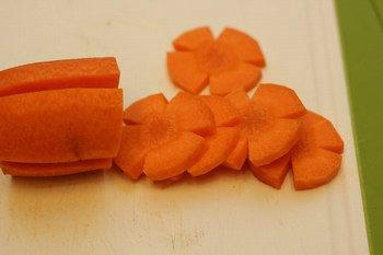 Carrot Flower 2