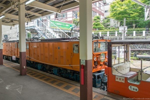 Kurobe Gorge Railway Unazuki Station