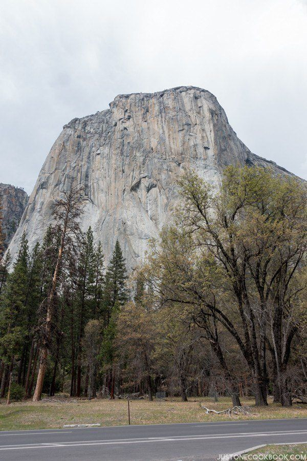 El Capitan Yosemite | Just One Cookbook