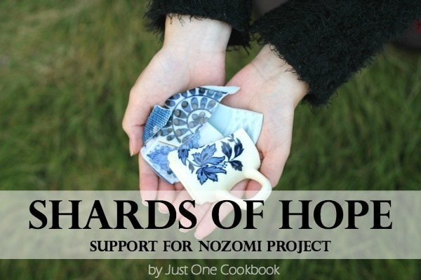 Shards of Hope – Support for Nozomi Project & Jewelries Giveaway