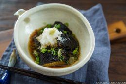 Deep Fried Eggplant in Light Broth (Eggplant Agebitashi) | Easy Japanese Recipes at JustOneCookbook.com