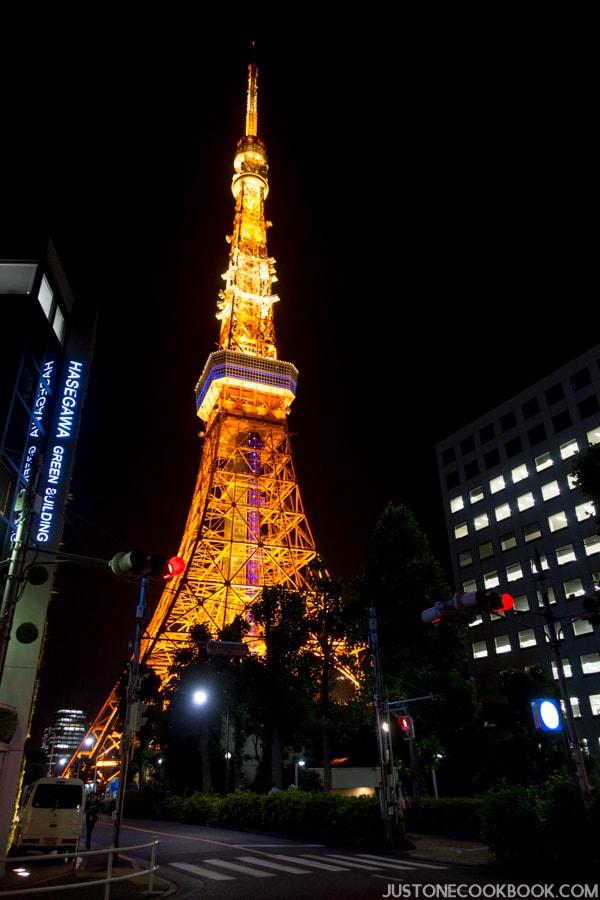 Visiting tokyo tower just one cookbook for Visit tokyo