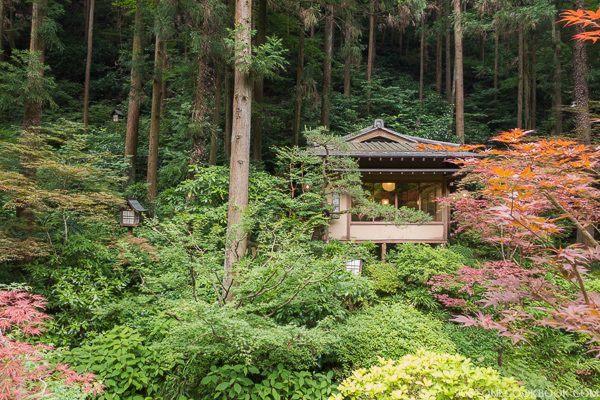 ukai toriyama-6