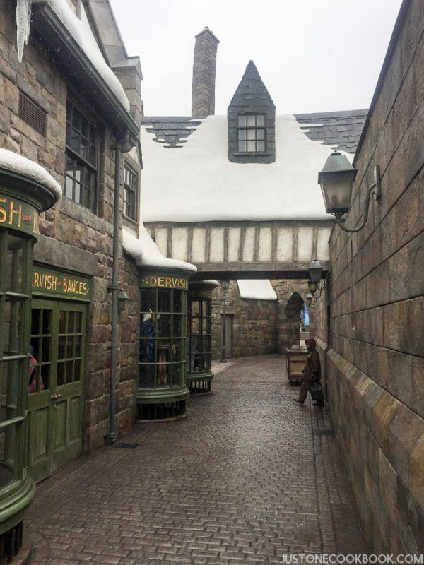The Wizarding World of Harry Osaka-4547