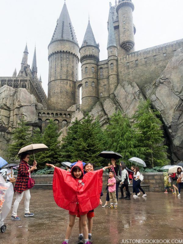 The Wizarding World of Harry Osaka-4578