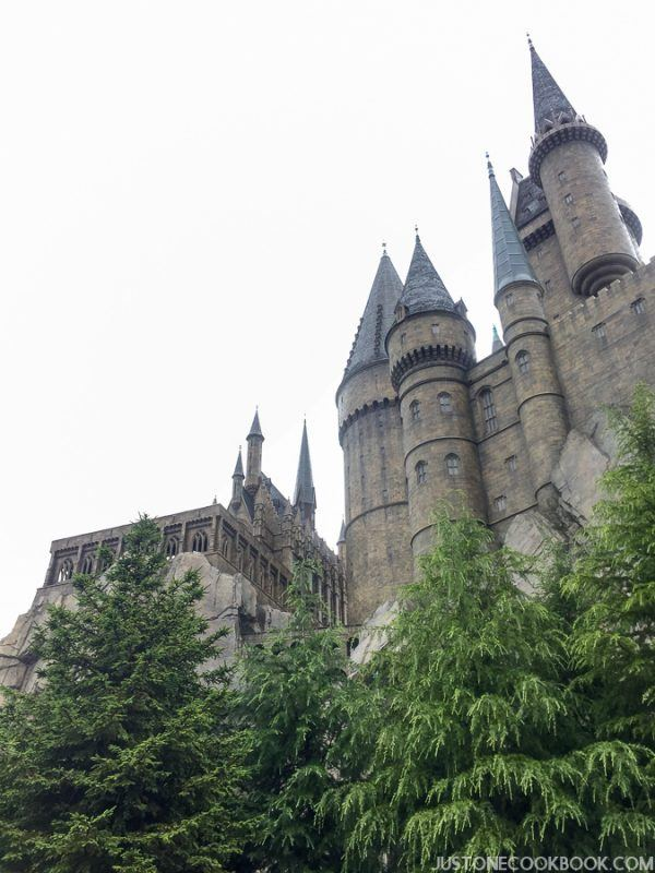 The Wizarding World of Harry Osaka-4579