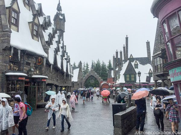 The Wizarding World of Harry Osaka-4588