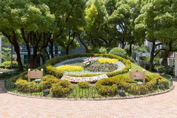 Kobe Flower Clock | Just One Cookbook