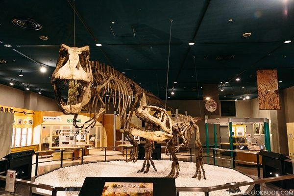 nagoya city science museum-0040