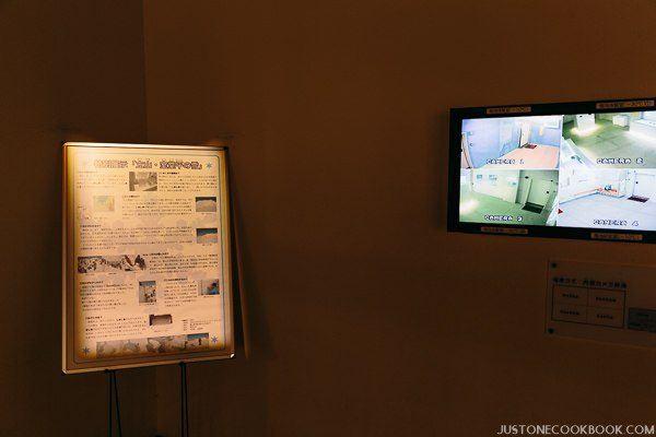 nagoya city science museum-0079