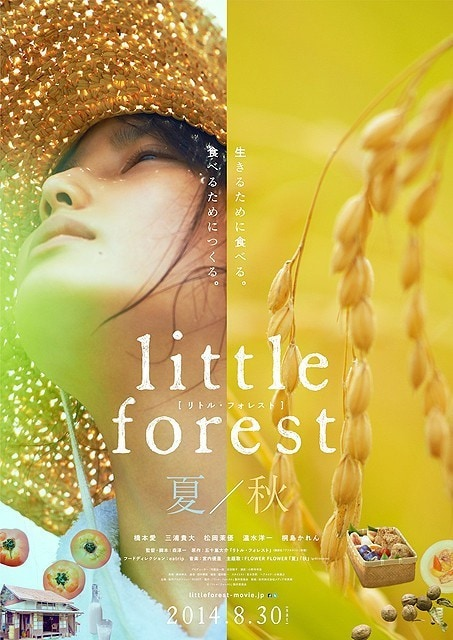 Little Forest- Summer & Autumn