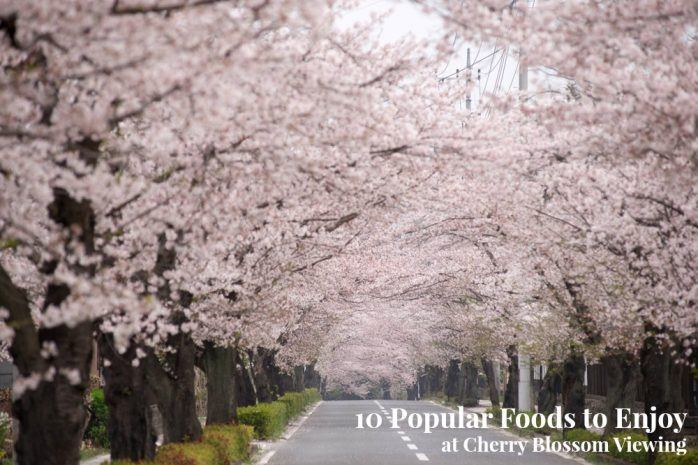 10 Popular Foods to Enjoy at Cherry Blossom Viewing (Hanami) | Easy Japanese Recipes at JustOneCookbook.com