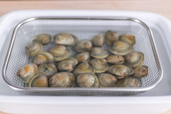 How to Clean Clams (De-grit)   Easy Japanese Recipes at JustOneCookbook.com
