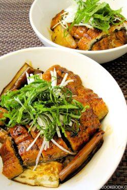 Eggplant & Unagi Donburi | JustOneCookbook.com