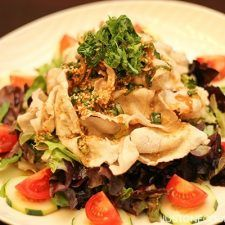Pork Shabu Salad with Ponzu Dressing on a plate.