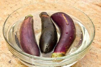 Japanese Grilled Eggplant (Yaki Nasu) 1