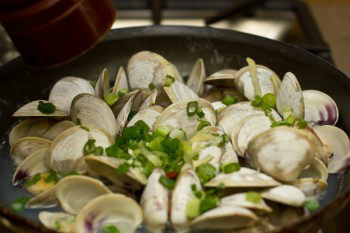 Japanese Clams 3