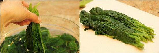 Spinach Ohitashi B