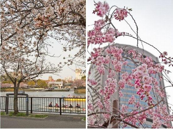 Japan Trip 2012 Vol 2 14