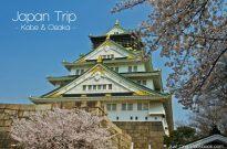 Cherry Blossom & KidZania in Osaka
