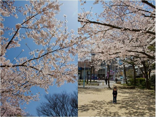 Japan Trip 2012 Vol 2 7