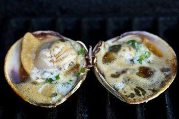Grilled Little Neck Clams 5