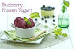 Blueberry Frozen Yogurt | Just One Cookbook