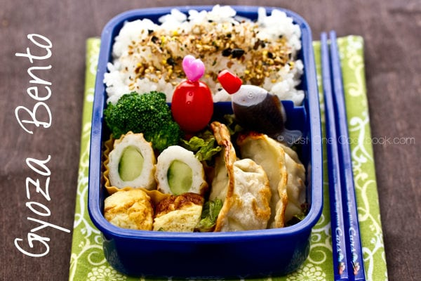 Gyoza Bento on a table.