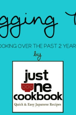 Blogging Tips | JustOneCookbook.com