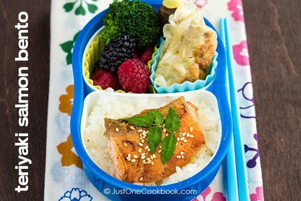 Teriyaki Salmon Bento with white rice, gyoza, broccoli and berries.