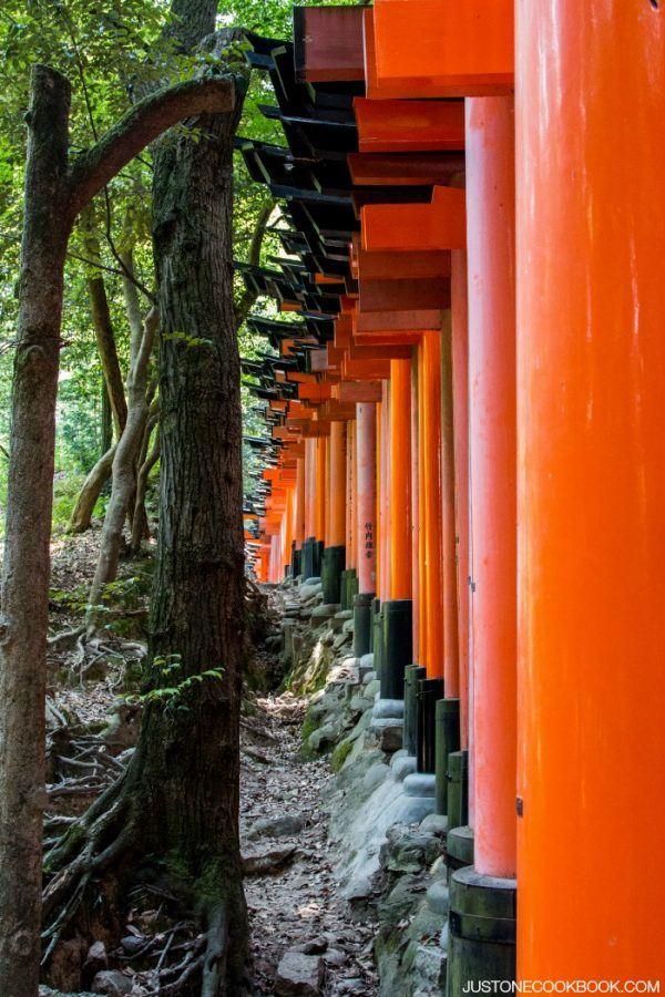Visiting Kyoto - Fushimi Inari #Japan #kyoto #guide #travel | Easy Japanese Recipes at JustOneCookbook.com