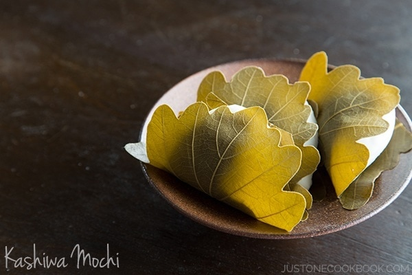 Kashiwa Mochi on a small plate.