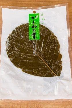 Kashiwa Oak Leaves