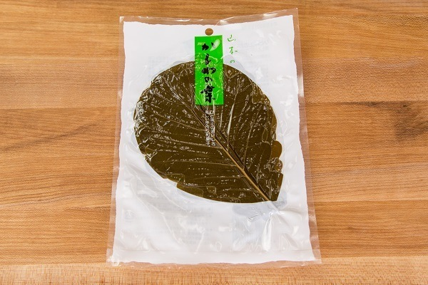Kashiwa Oak Leaves