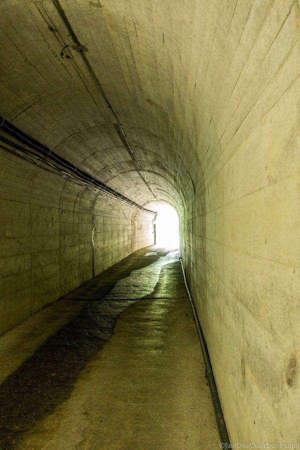 Tunnel to Meiken Onsen