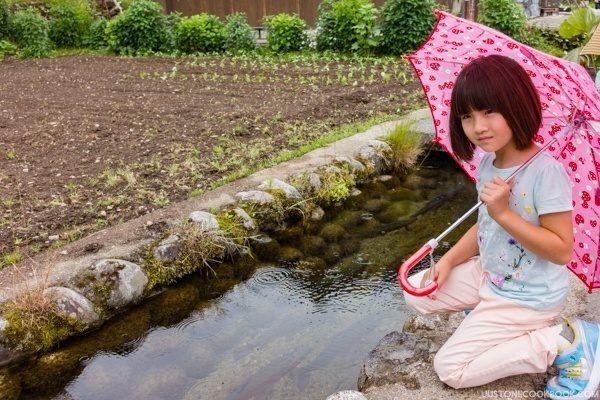 Trouts in Shirakawa-go | Just One Cookbook