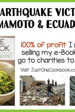 Help Kumamoto and Ecuador