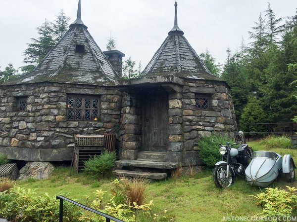 The Wizarding World of Harry Osaka-4567