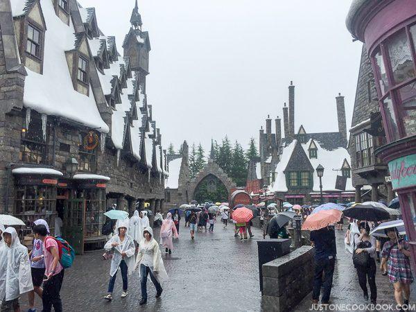 The Wizarding World of Harry Osaka-4588